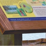 Framed interpretive panel