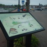 Multiguard® interpretive panel in powder coated steel frame - Whitesands Dumfries
