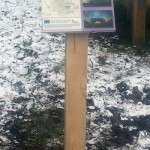 Small Timber Lectern with Multiguard® interpretive panel for Dark Skies project