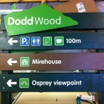 Timber signage for the Forestry Commission