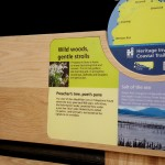 Detail of Oak bench Inverclyde Coastal Trail, with routed elements, and Multiguard® interpretive panels