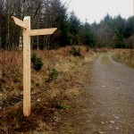 Fingerpost with 2 directional fingers - Dalbeattie forest