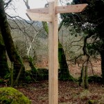 Dalbeattie forest - Fingerpost with 3 directional fingers
