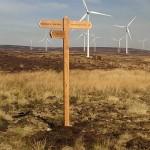Oak fingerpost - The Borders - Scotland