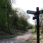Fingerpost with multiple directional fingers