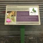 Multiguard® Eco panel