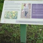 Single-leg Lectern with Multiguard® Eco panel