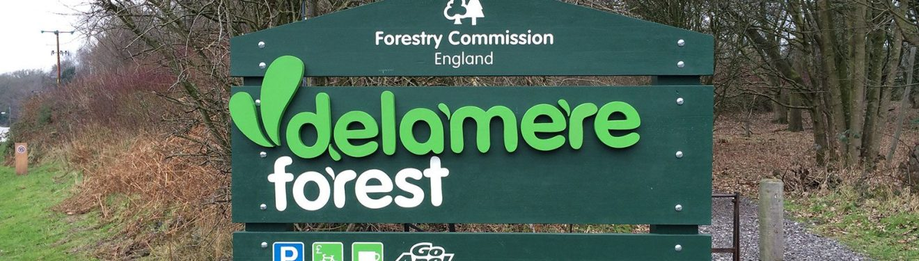 Delamere Forest sign by BSG Interpretation